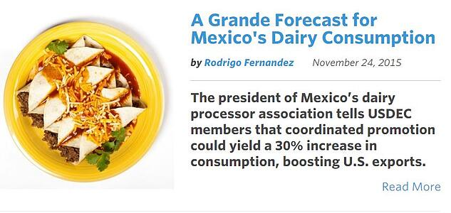 Mexican_Dairy_Market..jpg
